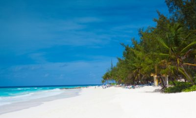 Wild Barbados: Adventures for Nature Lovers