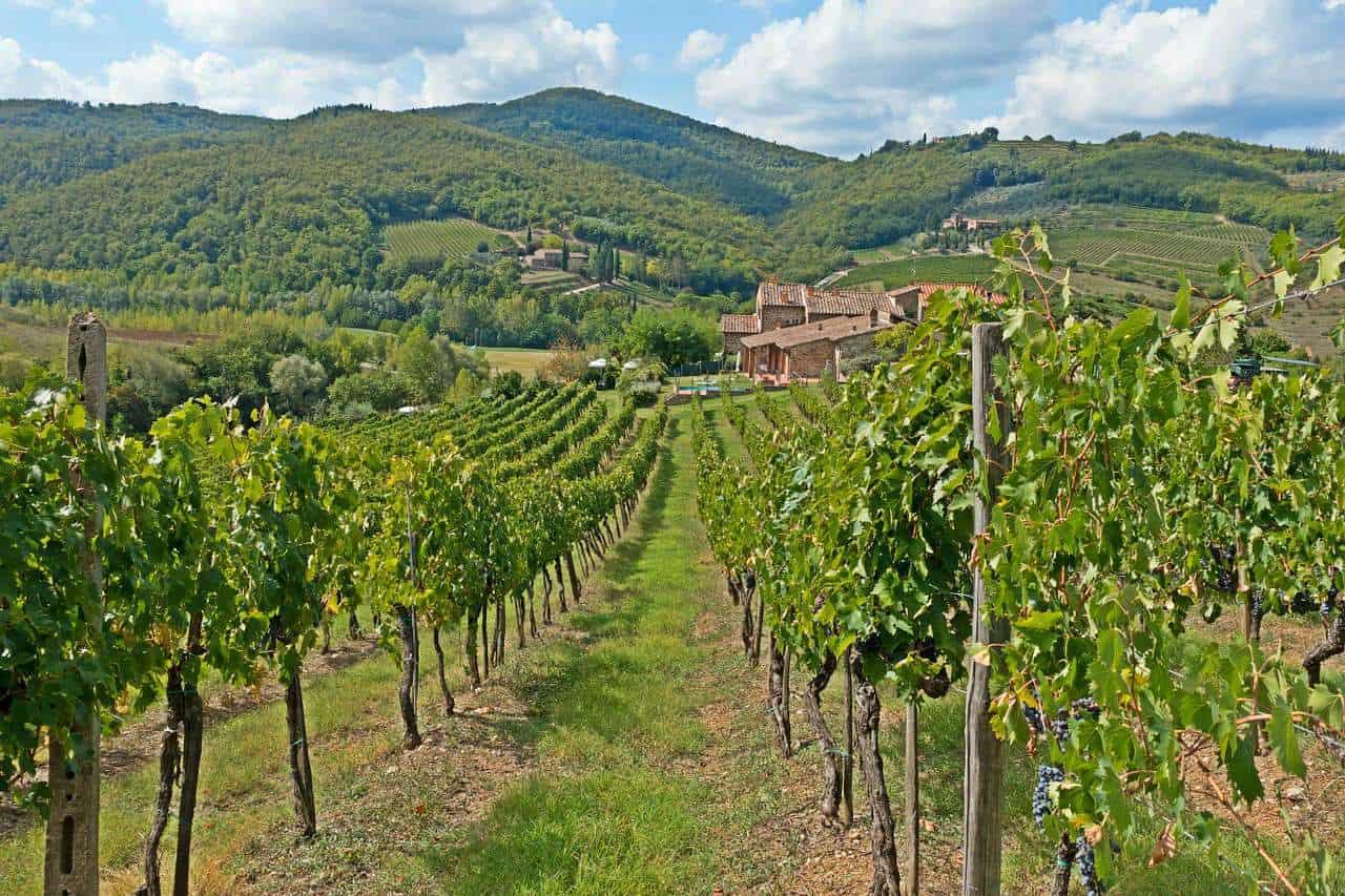 Luxury Escape Tuscany | Wine Tasting Chianti