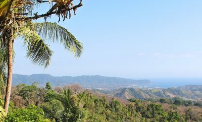 Amazing Trip for Nature-Lovers to See Wildlife in Costa Rica