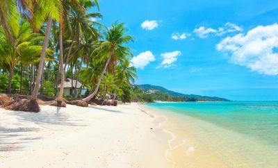 A Koh Samui Vacation