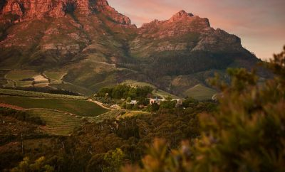 10 Best Vineyards on the Cape South Africa