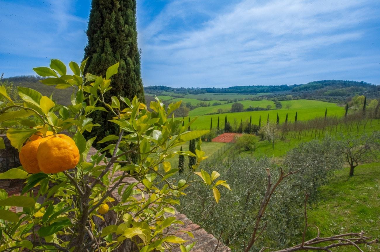 Villa Serena Tuscany